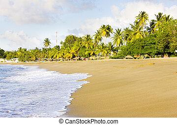 Turtle Beach, Tobago