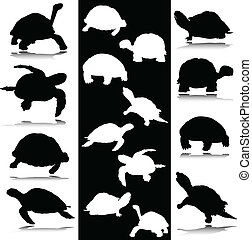 turtle black and white vector silhouettes