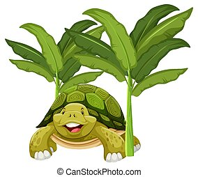 Turtle cartoon character with banana tree isolated