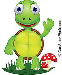 Turtle cartoon - Vector illustration of funny turtle cartoon