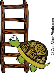 Turtle climbing up a wooden ladder