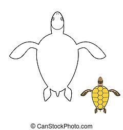 Turtle coloring book. Marine reptiles. Vector illustration