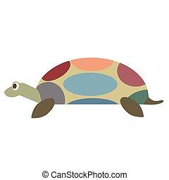 turtle flat illustration