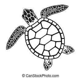 turtle, grafik, vektor, meer, abbildung