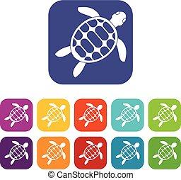 Turtle icons set flat