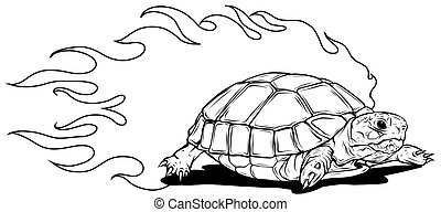 turtle isolated on white background vector illustration
