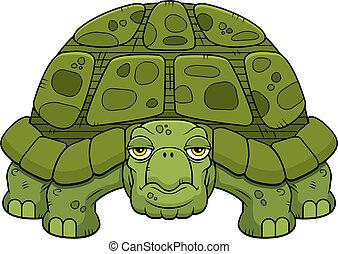 turtle, karikatur