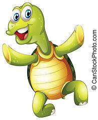 turtle, lächeln