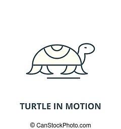 turtle, linear, begriff, symbol, bewegung, zeichen, vektor, ikone, linie, grobdarstellung