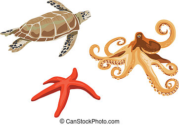 Turtle, octopus and starfish illustrations isolated on white...