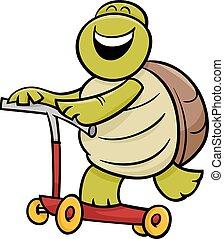 turtle on scooter cartoon illustration - Cartoon...