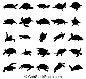 Turtle silhouettes set