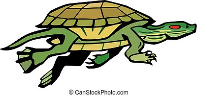 Turtle swimming - vector illustration a red eared slider or...