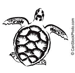 turtle - Vector image of  turtle on white background