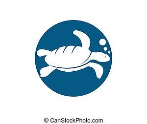 Turtle vector icon - Turtle animal cartoon icon image vector...