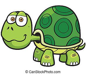Turtle - Vector illustration of Cartoon turtle