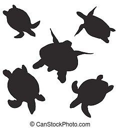 turtle vector silhouettes - turtle silhouettes on the white...