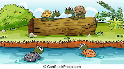 Turtles on water and log - Four turtles swimming on water...