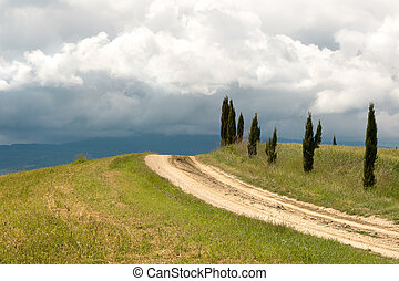Tuscan clouds and cypress trees