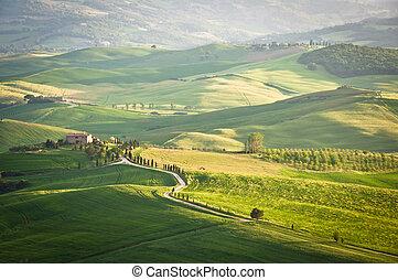 Tuscan hills in Pienza