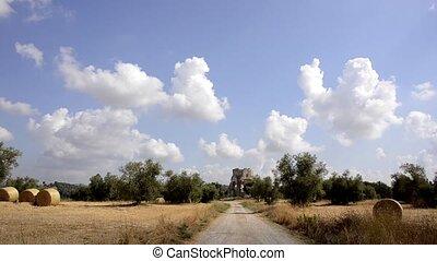 tuscan landscape - Agriculture, farmland. Tuscan landscape...