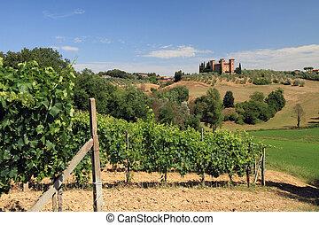 Tuscan hills, vineyards and castle Quattro Torri , Santa Regina near Siena, Italy, Europe.