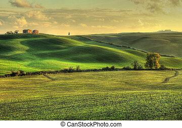 tuscan, paisagem, (hdr)