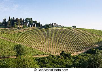 tuscan, paisagem, típico