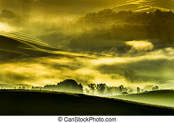 tuscan, tal, nebel, morgen