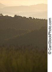 tuscan vista