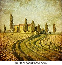 tuscan, weinlese, landschaftsbild