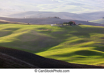 tuscany, 风景, 在, sunrise., tuscan, 农场房子, 葡萄园, 绿色, hills.