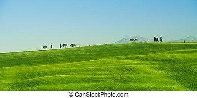 tuscany, 风景