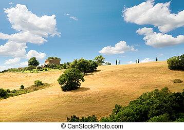 tuscany, 조경술을 써서 녹화하다
