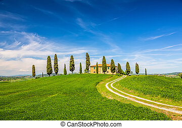 Tuscany at spring - Beautiful tuscany landscape at spring ,...