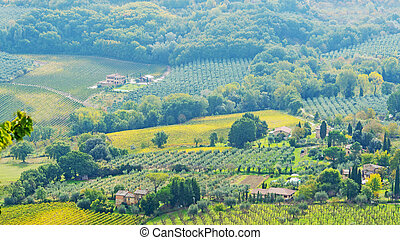 Tuscany countryside on a sunny day
