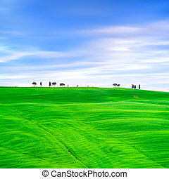 Tuscany country landscape, cypress trees and green fields. San Quirico Orcia, Italy, Europe.