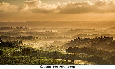 tuscany, em, a, começo matutino