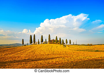 Tuscany, farmland and cypress trees and white road, country...