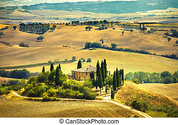 Tuscany, farmland and cypress trees country landscape, green fields. San Quirico Orcia, Italy, Europe.