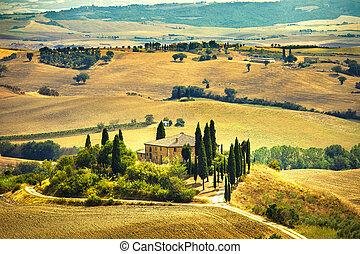 Tuscany, farmland and cypress trees, green fields. San...