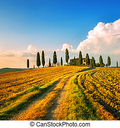 Tuscany, farmland, cypress trees and white road on sunset. Siena, Italy.