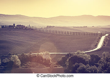 Tuscany fields and valleys autumn landscape, Italy. Sunset, vintage light