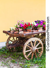 Tuscany flowers - Very elegant way to show flowers in...