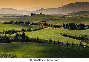 Tuscany - Green tuscany landscape in spring time
