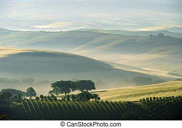 Tuscany hills 04