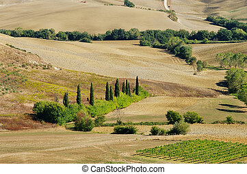 Tuscany hills in fall 01
