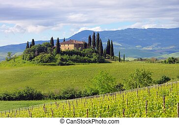 Tuscany house 06