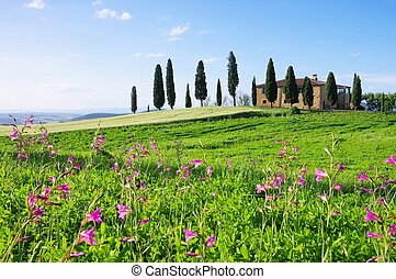 Tuscany house and flowers