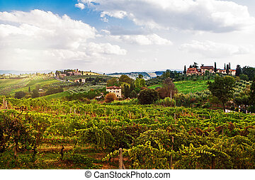 Tuscany Italy Vineyard and Countryside - A beautiful view of...